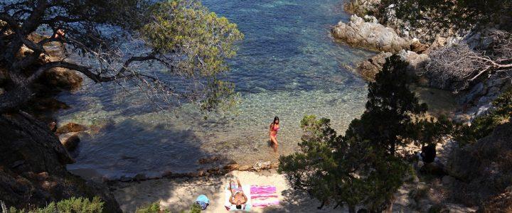 Les bonnes raisons de camper en Provence